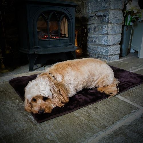 Sheepland Sheepskin Chocolate Pet Bed with dog sleeping on it